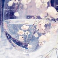.: delicate II :. by all17