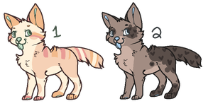 Canine OTAs {Closed} by Flovvers