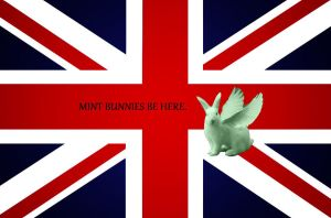England and Flying Mint Bunnies by LoveforThingsShiny