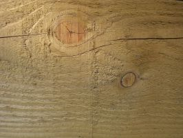 wood0005 by lotsoftextures