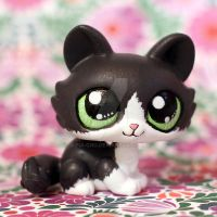 Maisy the cat (commission) LPS custom by pia-chu