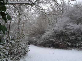 Snow, South East UK, Jan 2013 by Fragsey