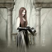 The Fog and the Portal by vampirekingdom