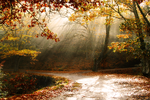Autum Photoretouch by WebMedia123