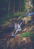 Amicalola Falls State Park: Lower Fall Part 2 by Natures-Studio