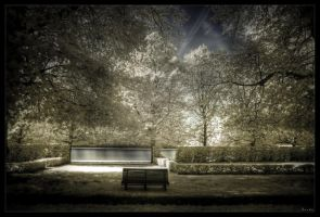 Golden seat by zardo