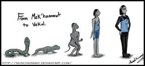Cardassian evolution by Munchkinmay