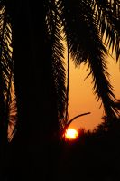 Djerba sunset Tunisia by strangetofla