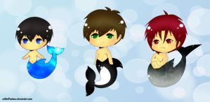 Free! Iwatobi Three. by xxMiniPandaxx
