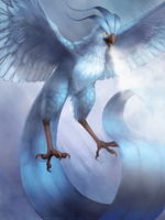 XD Articuno. by Sephirona