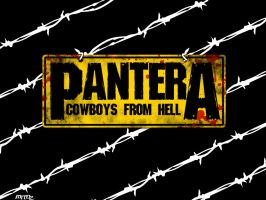 Pantera Wallpaper by mttbtt87