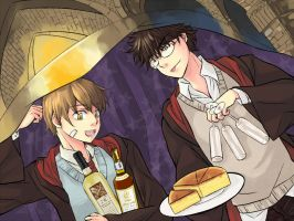 James and Remus Birthday by sojiron