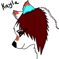 Kayla the Wolf Furry by KaylaTheWolf13
