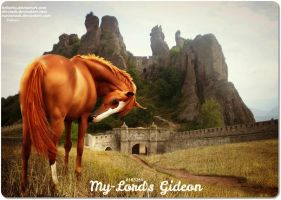 My-Lord's Gideon by JuneButterfly-stock