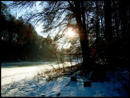 winter09 by waldelfe