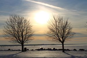 Cold Winter's Day by LifeThroughALens84
