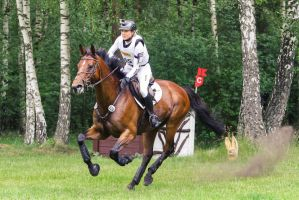 3DE Ingrid Klimke Hale Bob Cross Country 05 by LuDa-Stock