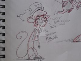 Dormouse Ringo by TheAbbeyRoadie