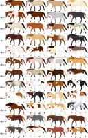 48 Horse Adoptables-closed by HDevers