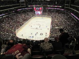 Kings-Coyotes Action by BigMac1212