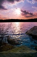 Veritcal Sunset at Burr Pond by photolight