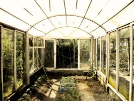 orangery by cochaczion
