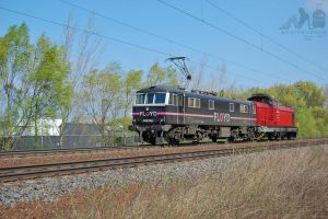 0450 004-1 and 429 004 near Gyor in march, 2012 by morpheus880223