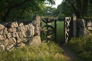 Church yard gate by theGuffa