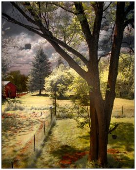 ir/hdr out the window by eniad