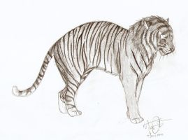 Tiger for Amanda by Joava