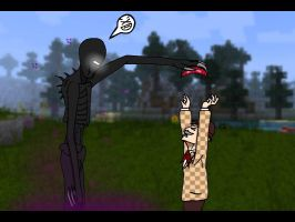 Mean Enderman is mean by Hashakgig1106