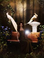 Autumn Enchantment by Afina79