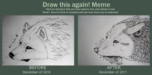 Before and After Meme 2010-2011 by Peace-Wolf