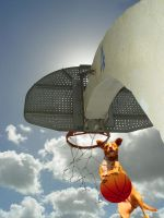 Dog Dunk by Malici0us