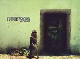 Neurone by Cl3tuS