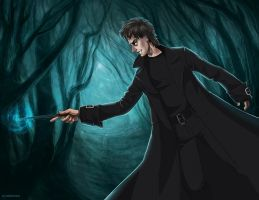 Harry Potter - Barty Crouch Jr by maXKennedy