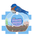 bluebirds and nice homes by Nekothebro