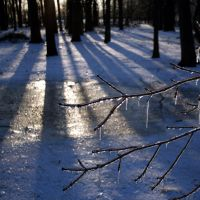 Ice, Light, Shadow 1 by edgyqueen