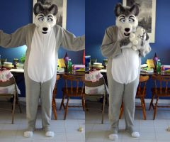 Husky Footies by LycanDID