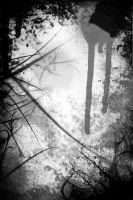The Woods are alive by BeBurn