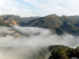 Mountain Mist by OneofakindKnight
