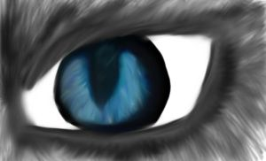 In the eyes of the blind- by Tala-Jayla