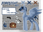Foresight Ref by Sketchi-Panda
