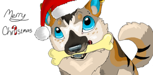 A blurry Christmas ID by Koala-Sam