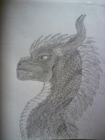DracoFlagrate by Nocturno19021992