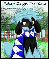 Future Zayn The Riolu by Zander-The-Artist
