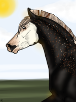Isaac for TopsailWhiz by Horse-Emotion