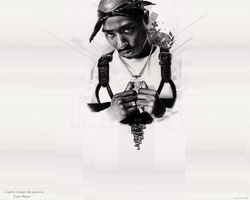 2pac Wallpaper by Piurek