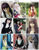 Cosplay year: 2014 by ryouism