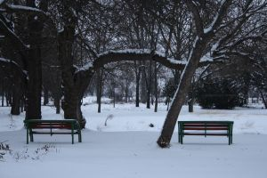 cold benches by dardaniM